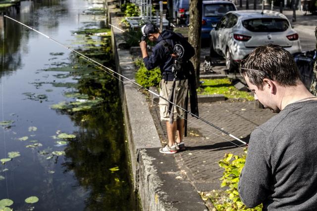 Streetfishing Den Haag
