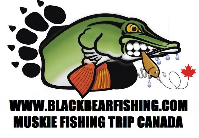 Black Bear Camp Canada sponsors a Musky/Muskie fishing trip for 1 team of 2 persons. Including 7 overnights with 7 days fishing from a fast fully equipped fishing boat fully gassed and ready to go.  Also includes breakfast, good filling lunch, evening dinner, fishing licence, tax of 13% www.blackbearfishing.com