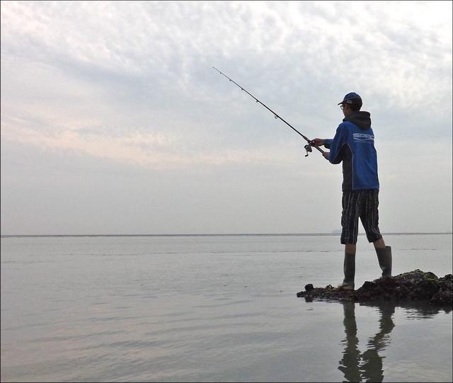 Strekdammen en oester- of mosselbanken zijn vaak echte hotspots.