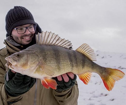 """Mustad voor het vissen met diverse """"finesse"""" systemen."""