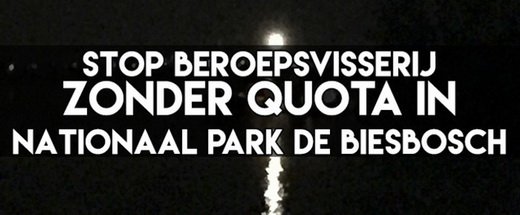 Stop de beroepsvisserij zonder quota in Nationaal Park de Biesbosch.