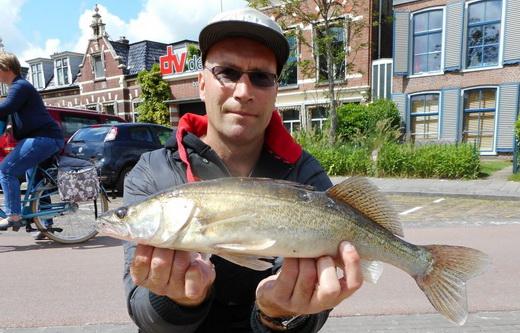 Wedstrijdkalender seizoen 2017-2018 Streetfishing Nederland