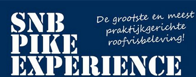 pike-experience-flyer-logo