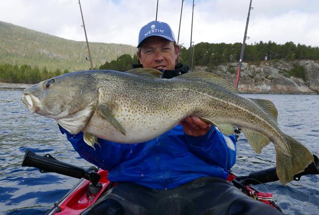 Een fantastische trip met meerdere meter vissen zoals deze dikke Kabeljauw van exact 100 cm.