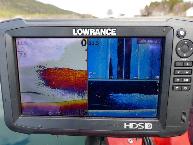 Haring gevonden dankzij de Lowrance HDS 9 Carbon. Waarop ook mooi te zien is dat er ook een rover bij zwemt in dit geval een flinke koolvis.
