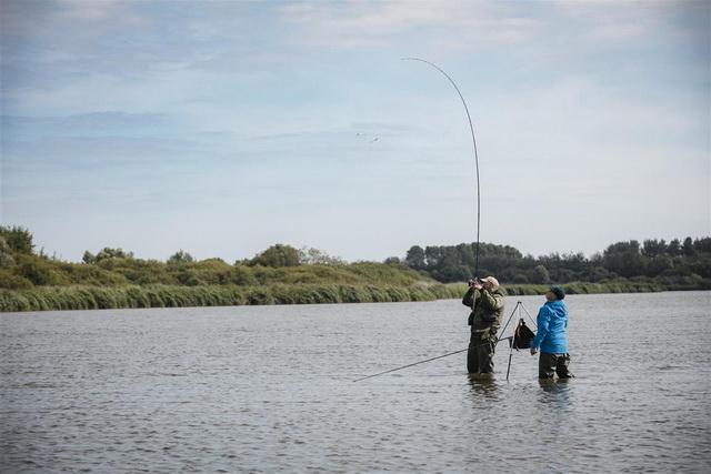 Kromme hengels in het Lauwersmeer.