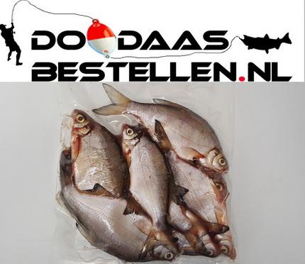 Doodaasbestellen.nl – Uw aasvis leverancier