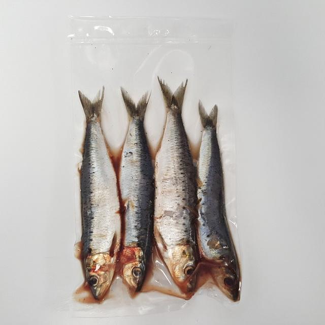 Sardines aasvissen