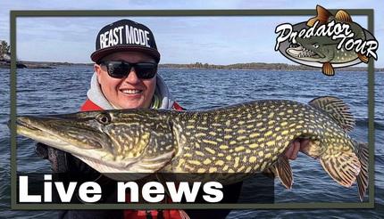 Update 2 Predatortour Zweden 2019.