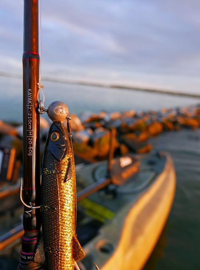 De nieuwe BullTeez (18 cm) kan prima werpend worden gevist met de W4 Kayak hengel.