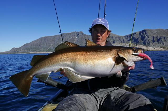 Absoluut onze nummer 1 als het gaat voor de werpende visserij op pollak en heilbot!! is de Sandy Andy van Westin in 62 en 82 gram.