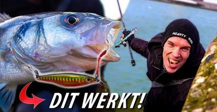 Nieuwe Video Fishuals. Jigs gebruiken voor hele dikke zeebaars.