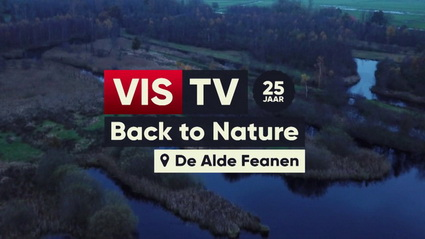 Friese veensnoeken in 10e aflevering Vis Tv.