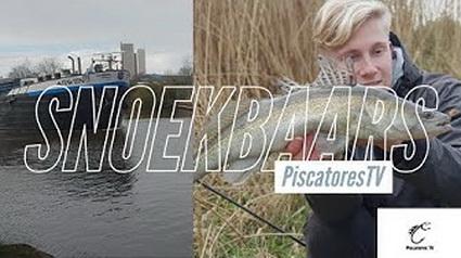 Achter de snoekbaarzen aan met Piscatores TV