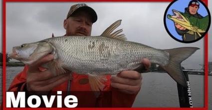 Veilig vissen en heel veel vangen op de rivier.