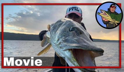Nieuwe video van Evert Oostdam. Snoek vissen in Zweden.