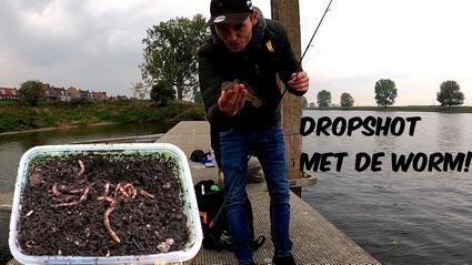 Video vissen op grondels met de worm.