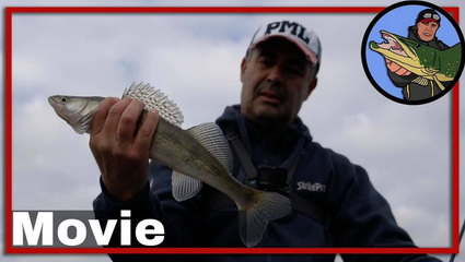 Vissen op baars en snoekbaars op het Noordzeekanaal.