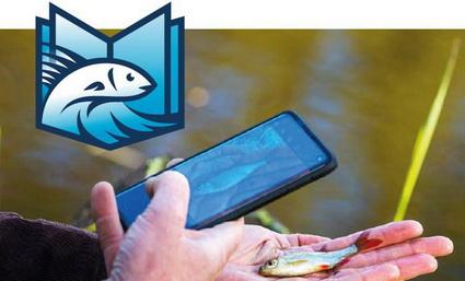 VISsenscanner herkent nu ook 72 zeevissen!