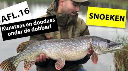 Snoeken met doodaas onder de dobber en kunstaas vissen!