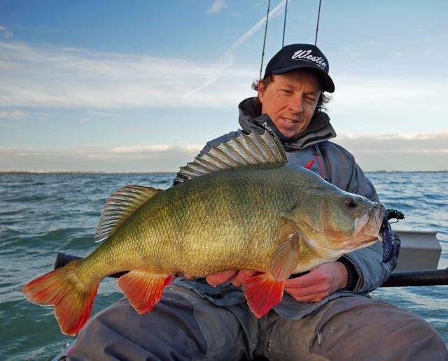 Creature Baits zoals de CreCraw van Westin-Fishing zijn super voor de koudere periodes.