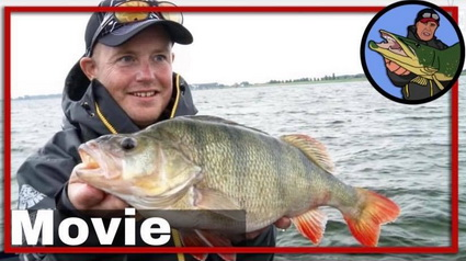 Evert Oostdam Perch Pro 4, CWC FISHING TEAM COMPILATION