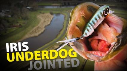 Voor cultuurwater de Spro IRIS Underdog Jointed