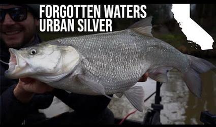 Nieuwe video White Label Fishing. Terug naar de basis!