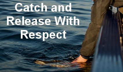 Catch and Release – With Respect.